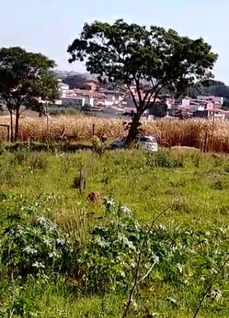 Roubo, perseguição, tiroteio e morte de menor no Bairro Matão, em Sumaré