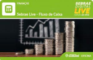 A partir deste dia 19, o Sebrae oferece capacitação 'online'' gratuita para empreendedores
